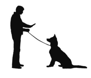 dog training and obedience_r